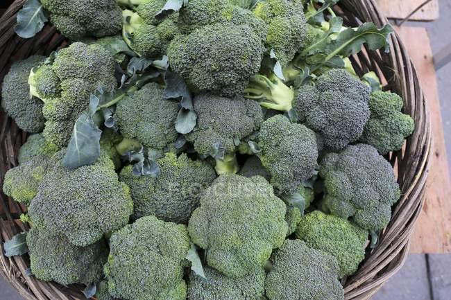 Organic green broccolis — Stock Photo