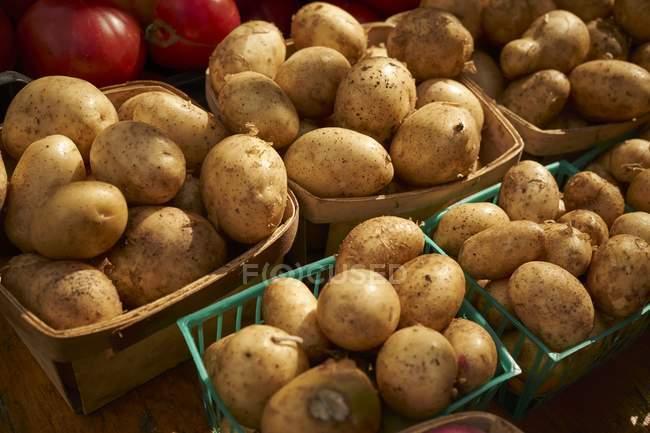 Körbe mit rohen Kartoffeln — Stockfoto