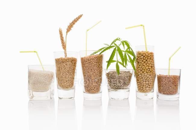 Cereali e semi vari — Foto stock