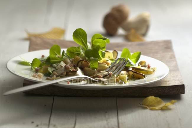 Valeriana con funghi — Foto stock