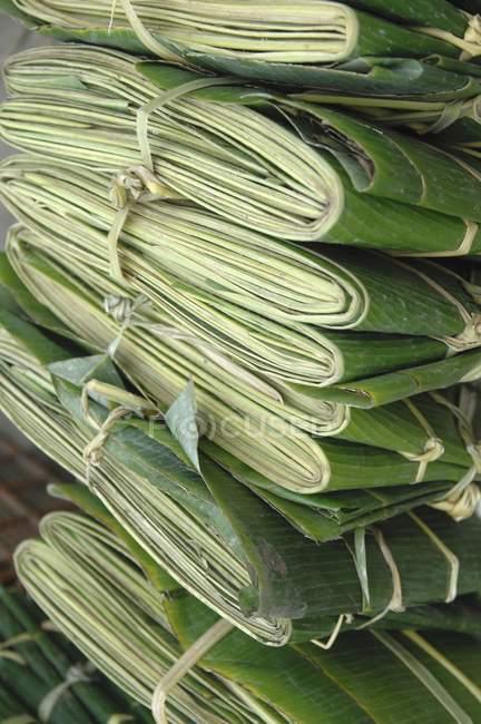 Банановые листья — стоковое фото