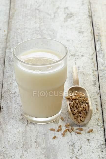 Vidro de leite de espelta — Fotografia de Stock