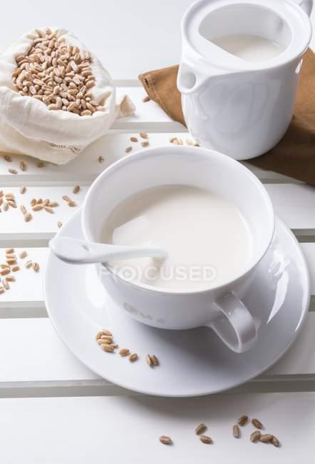 Leche de espelta en taza - foto de stock