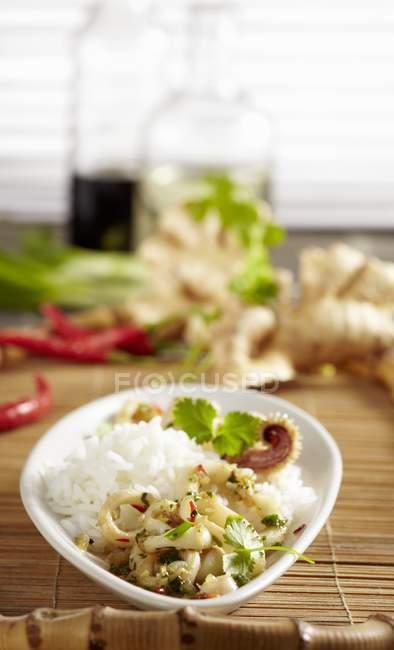 Tintenfisch in würziger Sauce mit Reis — Stockfoto
