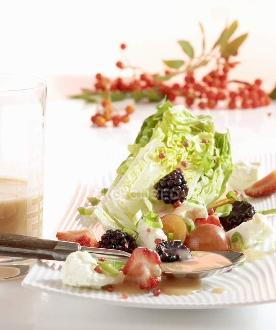 Closeup view of gem lettuce with a rowan berry vinaigrette on plate — Stock Photo