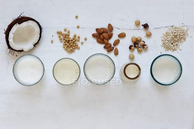 Verschiedene Arten von Milch — Stockfoto