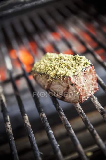 Spiced Tuna fish piece — Stock Photo