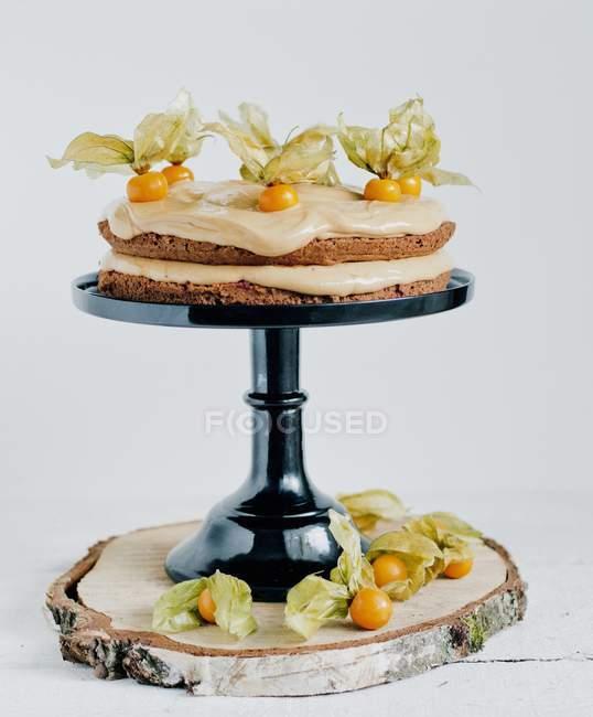 Шоколадный торт с Физалис — стоковое фото