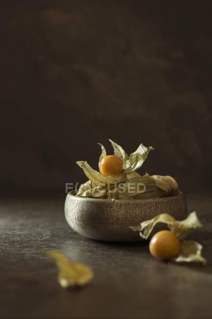 Bowl of physalis fruits — Stock Photo