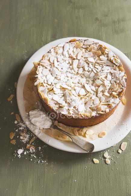 Торт с сахарной пудрой — стоковое фото