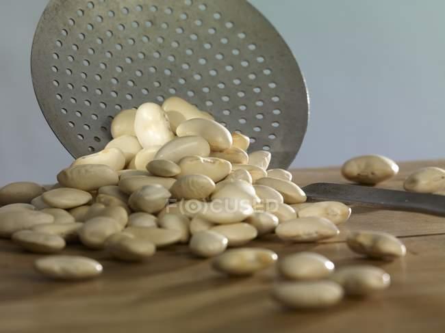 Gros haricots blancs avec cuillère — Photo de stock