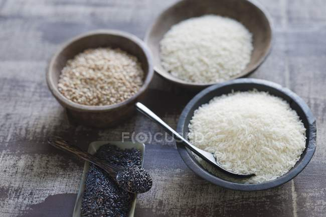 Various different types of rice — Stock Photo