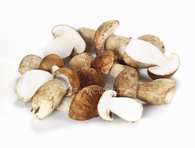 Fresh porcini mushrooms — Stock Photo
