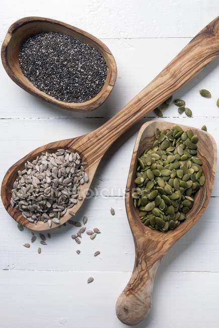 Graines de tournesol sur cuillères — Photo de stock