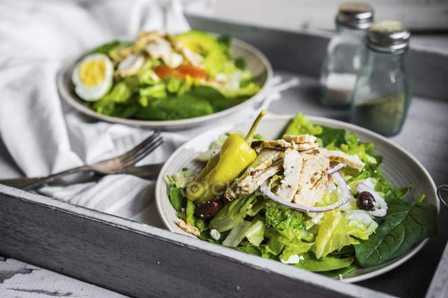 Insalata verde con pollo — Foto stock