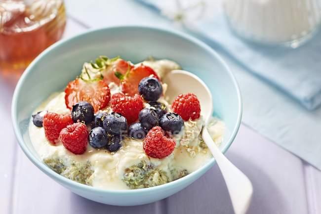 Quinoa aux fruits et graines — Photo de stock