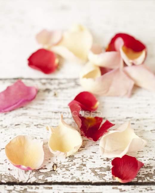 Крупним планом подання їстівні пелюстків троянд на пошарпаний дерев'яні поверхні — стокове фото