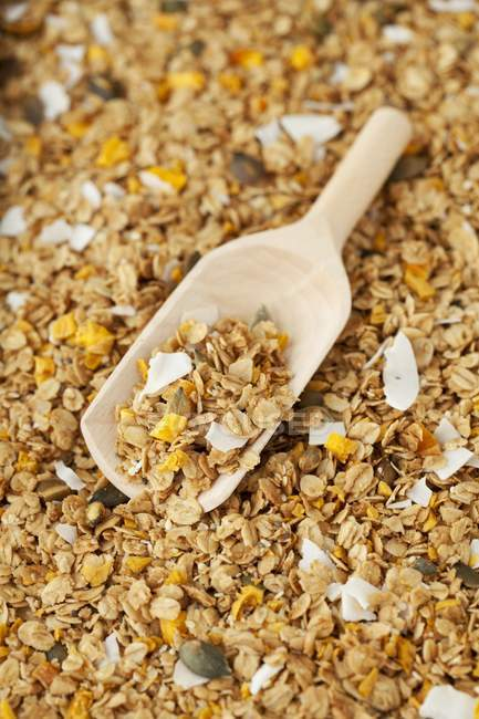 Muesli muesli con mango essiccato — Foto stock