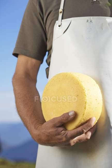 Fromager avec roue de fromage — Photo de stock