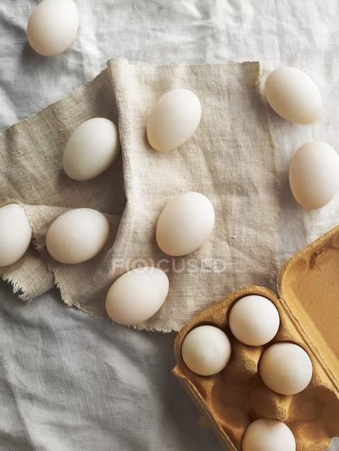 Свежие белые яйца — стоковое фото