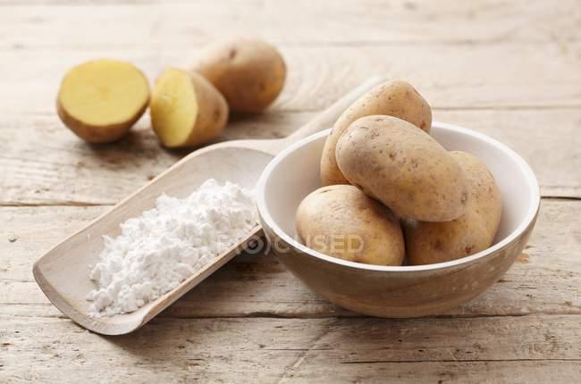 Rohe Kartoffeln und Kartoffelstärke in Kugel — Stockfoto