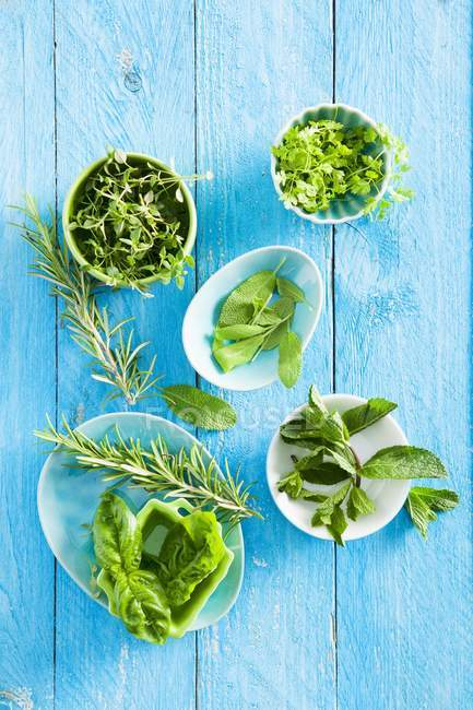 Fresh rosemary and sage in bowls — Stock Photo