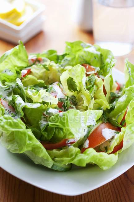 Lettuce with tomatoes and yogurt — Stock Photo
