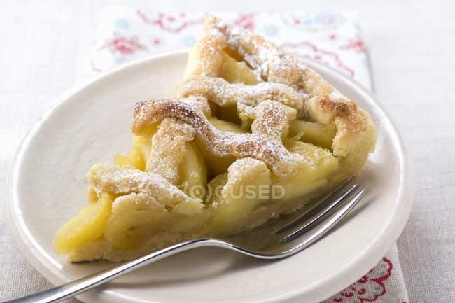 Pezzo di crostata di mele con grata di pasticceria — Foto stock