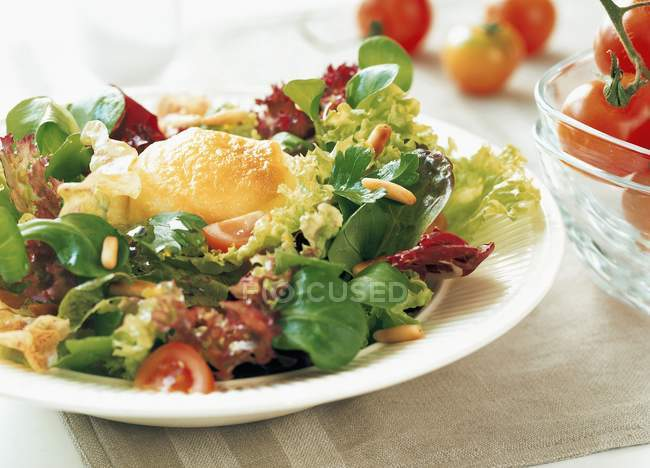 Salad leaves with cheese — Stock Photo