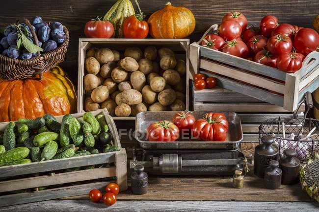 Various types of vegetables in crates and in a basket with plums — Stock Photo