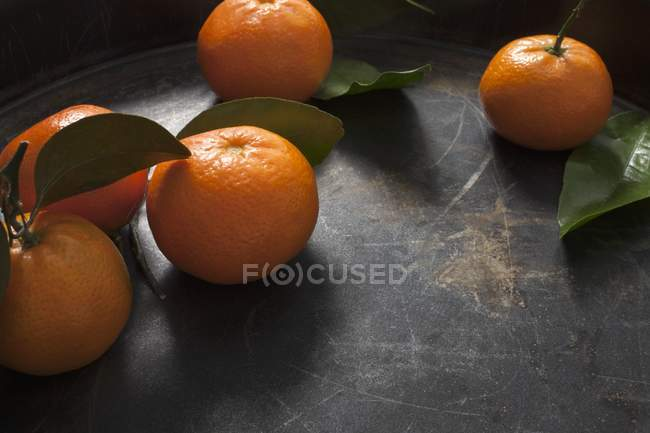 Clementines with stems and leaves — Stock Photo