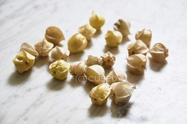 Physalis fruits with shells — Stock Photo