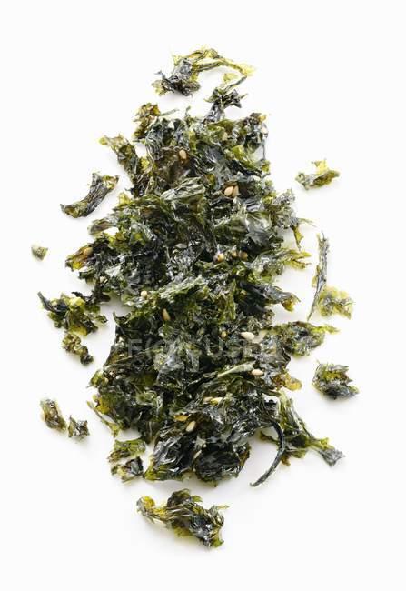 Gebratene Algen mit Sesam auf weißem Hintergrund — Stockfoto