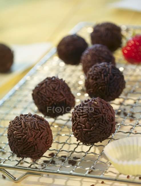 Truffes au rhum au chocolat — Photo de stock
