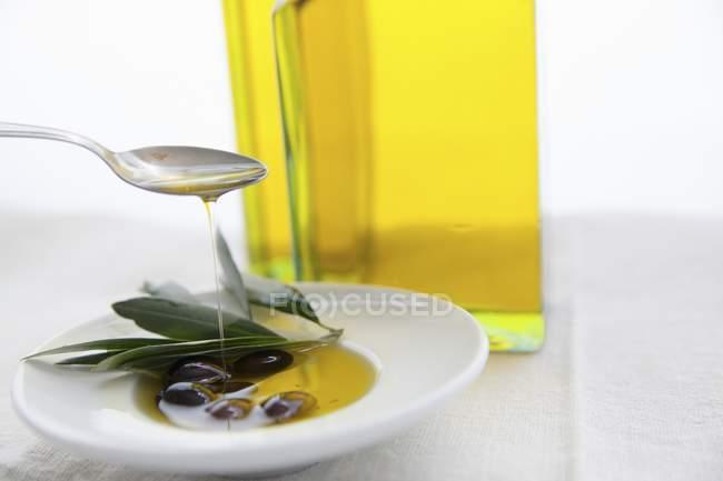 Huile d'olive versée sur les feuilles — Photo de stock