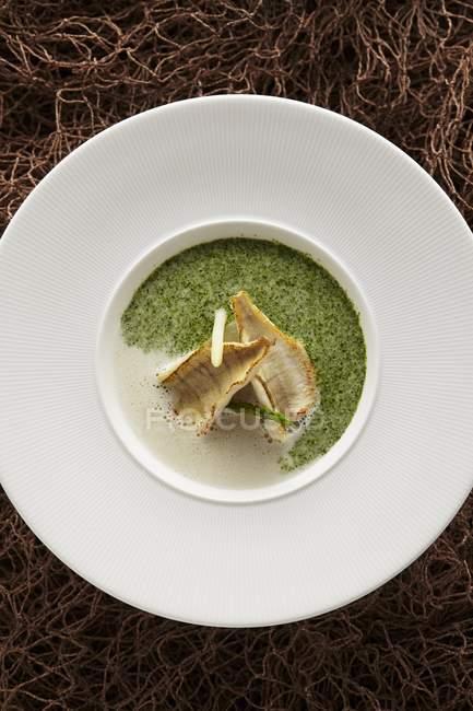 Soupe de cresson mousseuse aux filets de corégone — Photo de stock