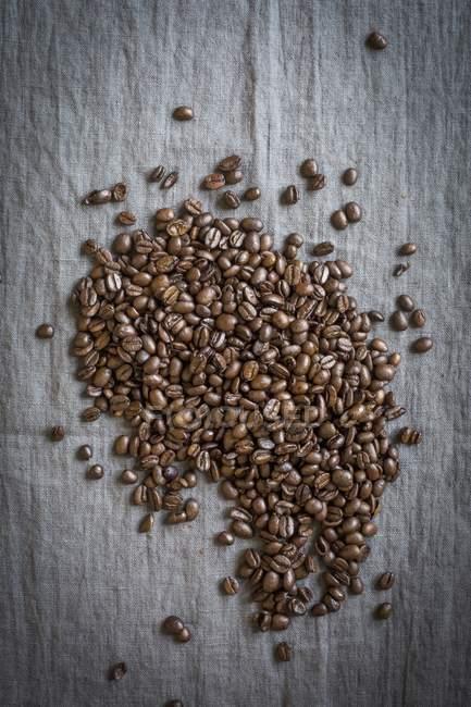 Granos de café frescos crudos - foto de stock