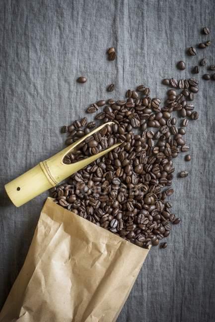 Разлив кофейных зерен — стоковое фото