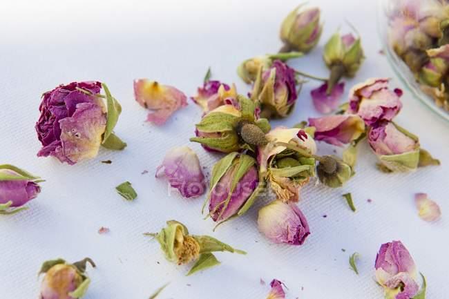 Nahaufnahme von getrockneten Rosenblättern und Blumen — Stockfoto