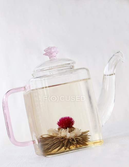 Fleur de thé dans la théière en verre — Photo de stock