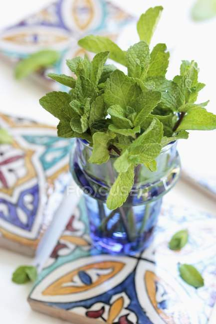 Peppermint in glass vase — Stock Photo