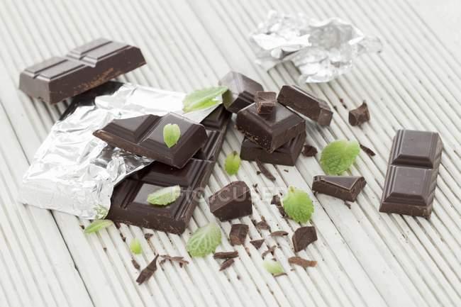 Chocolat et feuilles de menthe — Photo de stock