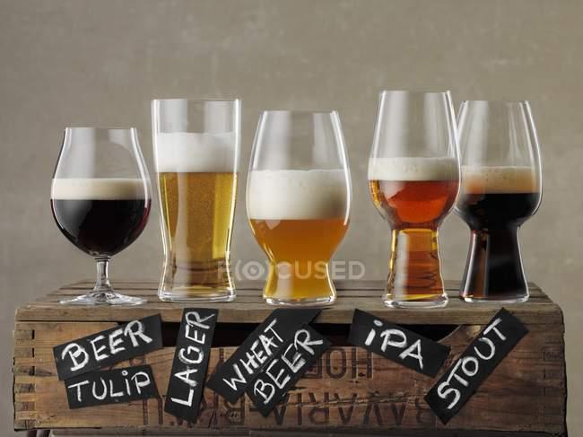 Різні види пива — стокове фото