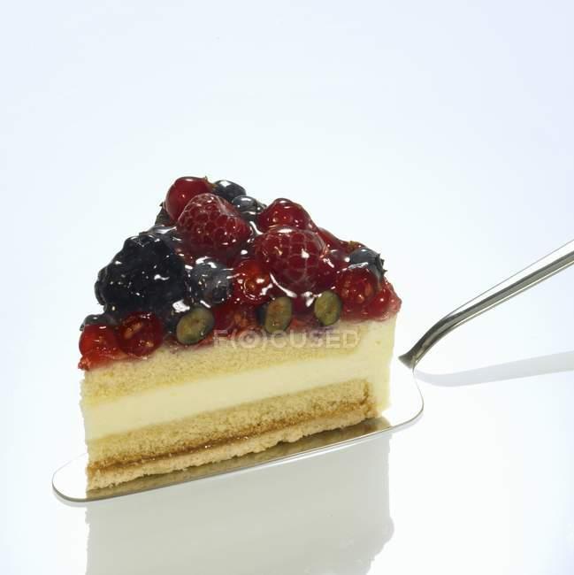 Wild berry cake on cake slice — Stock Photo