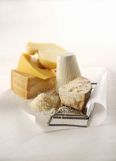 Различные типы сыра — стоковое фото