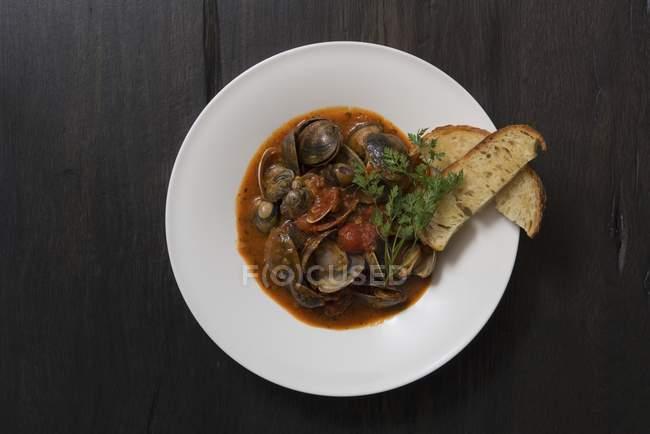 Brodo di pomodoro piccante — Foto stock