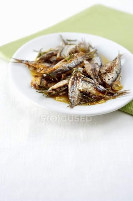 Мягкие сардины с розмарином — стоковое фото