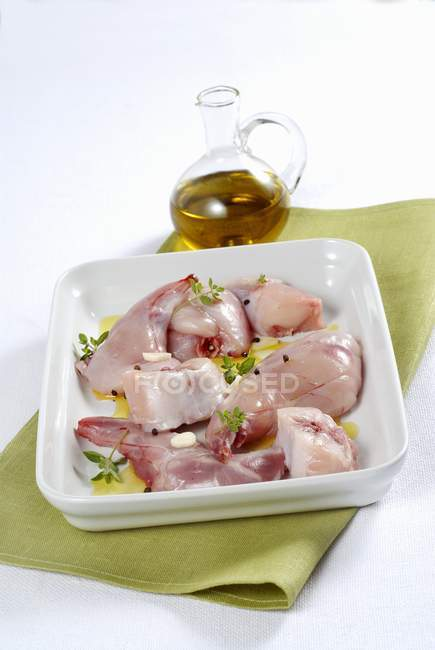 Raw rabbit meat — green, color - Stock Photo | #156314070