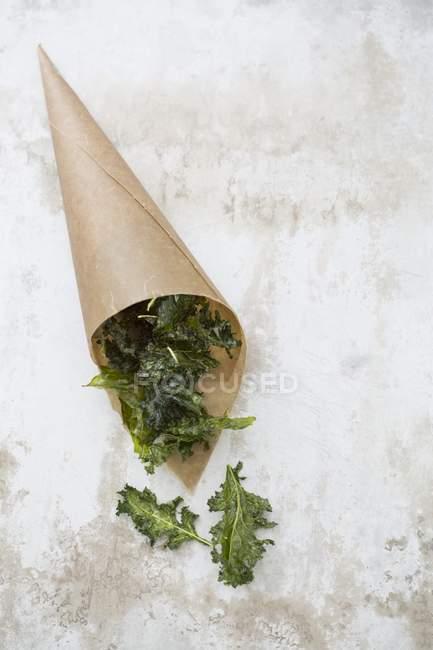 Kale crisps in brown paper bag — Stock Photo