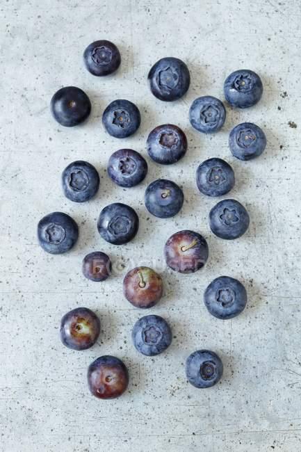 Arándanos maduros frescos - foto de stock